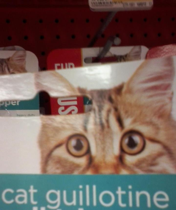 Why Petco, why?