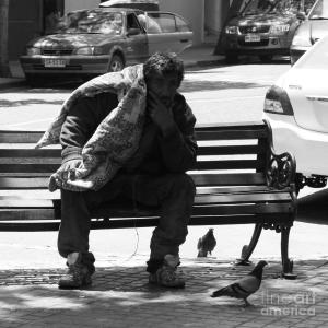 pigeon-man-rachel-chatham
